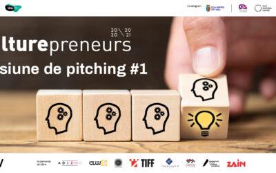 Culturepreneurs 20/21: Prima sesiune de pitching